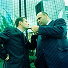 Two businessmen pointing at each other, side view