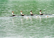 Four men rowing crew in boat, side view