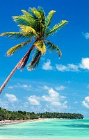 Beach. Punta Cana (eastern tip of the island). Dominican Republic. West Indies. Caribbean