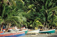 Fishing boats. Schoelcher. Martinique. West Indies. Caribbean