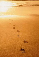 Footprints in sand (thumbnail)