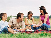 Family Having a Picnic in the Countryside