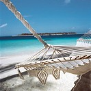 Hammock on a beach by the water's edge (thumbnail)