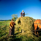 Women working in a field. Bulgaria