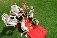 Christmas picnic