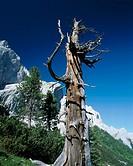Austria, Tyrol, Karwendelgebirge