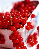 Red currant berries, cardboard box