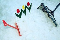 Two shovels and plastic flowers in snow bank