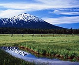 Mt. Bachelor reflects in Sparks Lake meadow pond. Deschutes National Forest. Oregon