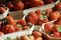 Ripe Strawberries in Cardboard Containers