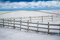 White fence in snow