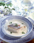 Pike-perch back in chervil sauce