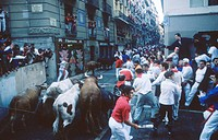 Running of the bulls. San Fermin. Pamplona. Navarre. Spain