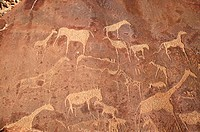 Cave carvings