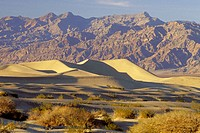 Sand dunes, Death Valley National Park. California. USA