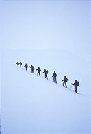 FV5029, Jerry Kobalenko, Backcountry Skiers in Line, Purcell Mtns B.C´