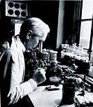Professor Fleming working in his laboratory at St Mary´s Hospital, Paddington, London. Fleming (1881-1955) identified the antibacterial properties of ...