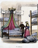 Vignette from a lithographic plate showing the interior of  a shop selling feather beds made of goose feathers and down. Taken from ´The Swan, Goose a...