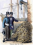 Vignette from a lithographic plate showing two men standing beside a pile of walrus skins, possibly discussing a price for the catch. Taken from ´The ...