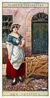 A street hawker in a cap and apron with a barrow full of potatoes. Number 2 in the 1916 series 'Cries of London, 2nd Series' by John Player & Sons. Th...