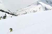 High Altitude Skiing