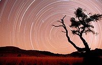Star trails. Namib-Naukluft Park. Namib Desert. Namibia