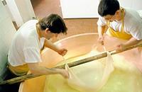 Parmigiano reggiano making. Emilia-Romagna. Italy