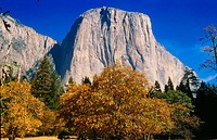El Capitan. Yosemite Valley. Yosemite National Park. California. USA