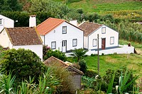 Farm on Sao Miguel, Azores. Portugal