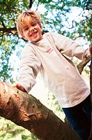 Boy in a tree, medium full shot (thumbnail)
