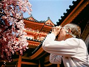 Blossoming cherry trees at Heian shrine. Elderly man taking a picture of flowers. Kyoto in spring. Japan.