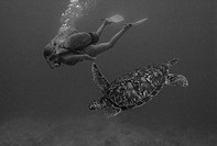 Scuba diver with sea turtle