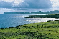Poike Peninsula, East coast. Easter Island. Chile.