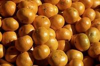 Many Tangerines