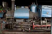 Steam engine, Darjeeling. India