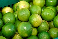 Lemon, market, agriculture, Brazil (thumbnail)