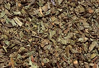 Dried and cut plantain herb (Plantago lanceolata), used medicinally to suppress coughs associated with bronchitis, colds, and upper respiratory inflam...