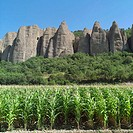 Maize and Les Rochers des Mées rock formation. Haute-Provence Alps. France