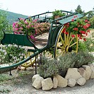 Ancient horse cart with flowers. Monieux. Vaucluse. Provence. France
