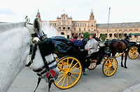 Horse drawn carriage. City of Sevilla. Andalucia. Spain