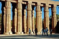 Luxor Temple. Luxor. Egypt