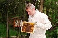 Imker mit Bienenwabe
