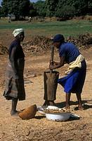 AN AFRICAN SCENE<BR>Photo essay.<BR>Farming women in Ouagadougou, Burkina Faso.
