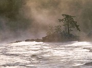 Misty morning over rapids in river Voxnan. Hälsingland, Sweden