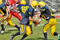 High School Football action. Port Huron. Michigan. USA