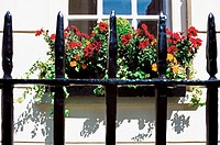 Window box and railings