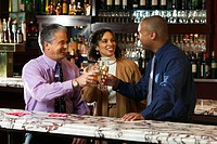Coworkers meet in a bar after work to toast a new deal