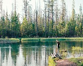 Fly fishing. Fall river. Deschutes County. Oregon. USA.