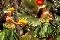 Very colorful Hawaiian wahine dancing hula with ti-leaf skirts and feathers