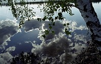 Reflection of clouds in still water  Sweden